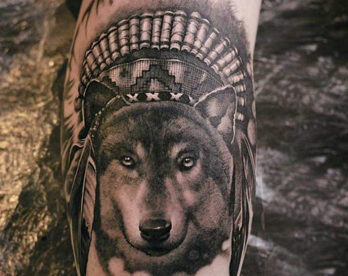 wolf-with-feathers-756435yhgr
