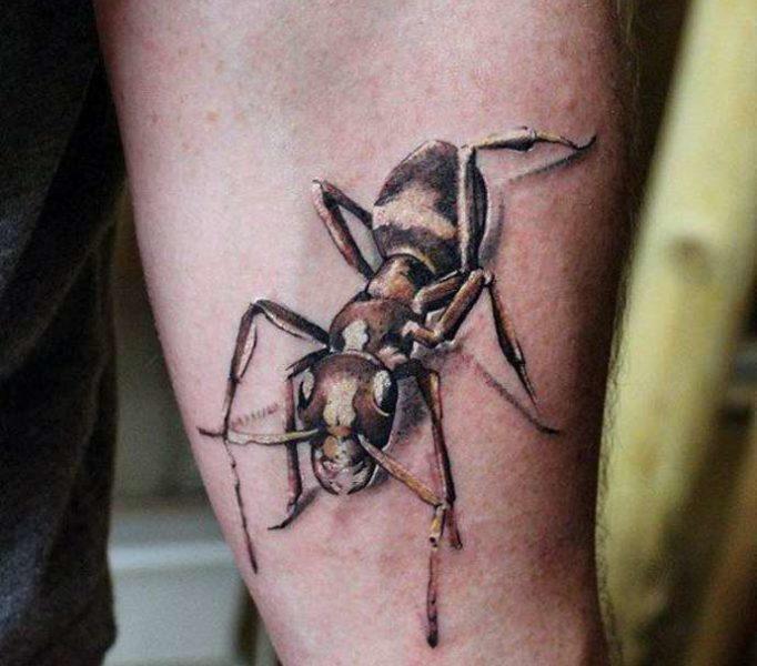 tattoo-ant-ugit76r75k64j5ehrbi6r5k746je