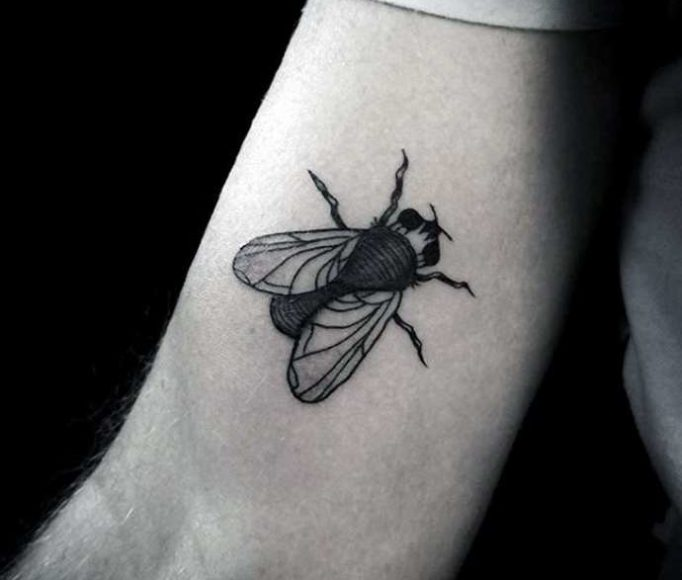 tattoo-fly-iot76rk57j46htebv