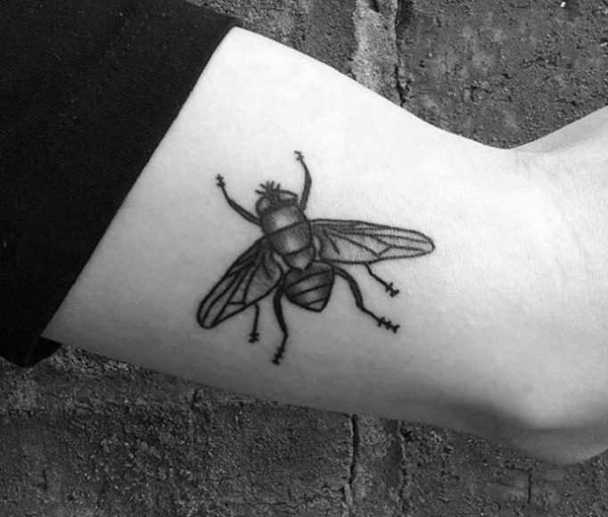 tattoo-fly-uti7l68k57e46ju5hgr