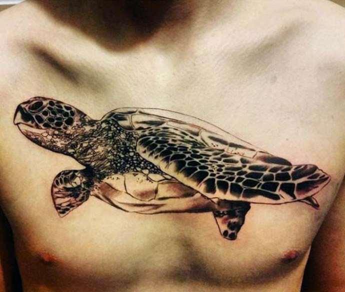 морская черепаха на груди у мужчины