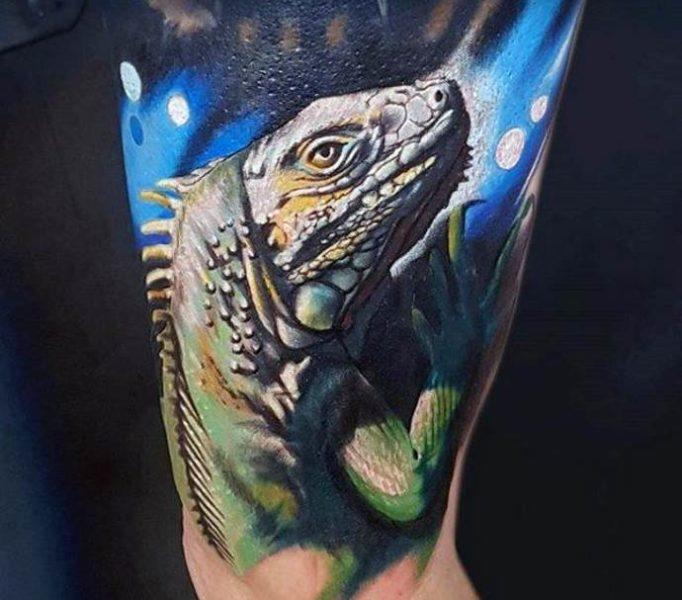 tattoo-iguana-ut5jw4635hwg
